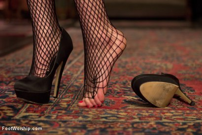 Photo number 1 from Foot Maids: Part 1 shot for Foot Worship on Kink.com. Featuring Mona Wales, Bella Rossi and Kip Johnson in hardcore BDSM & Fetish porn.