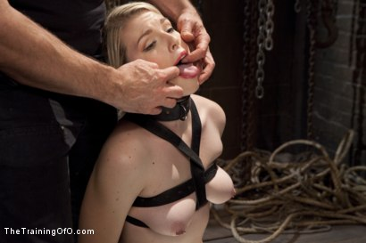 Photo number 4 from Balls Deep Anal Fuck Training, Day Two shot for The Training Of O on Kink.com. Featuring Ella Nova  and Wolf Hudson in hardcore BDSM & Fetish porn.