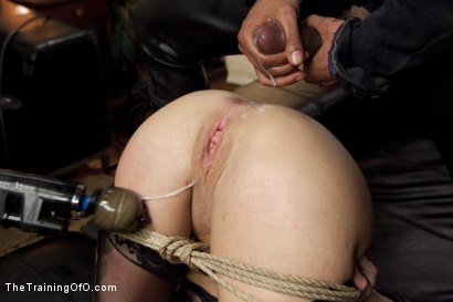 Photo number 14 from The Training of a Nympho Anal MILF, Day Two shot for The Training Of O on Kink.com. Featuring Veronica Avluv and Mickey Mod in hardcore BDSM & Fetish porn.