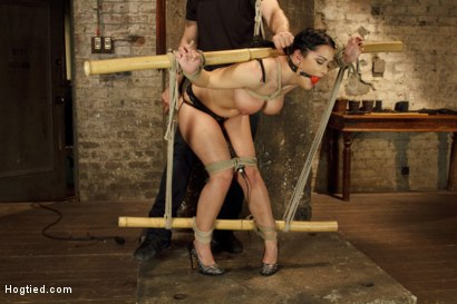 Photo number 2 from Introducing Double H All Natural Tits Katrina Jade shot for Hogtied on Kink.com. Featuring Katrina Jade in hardcore BDSM & Fetish porn.