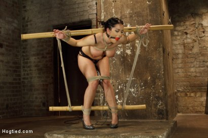 Photo number 4 from Introducing Double H All Natural Tits Katrina Jade shot for Hogtied on Kink.com. Featuring Katrina Jade in hardcore BDSM & Fetish porn.