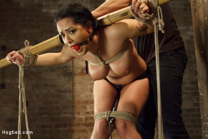 Photo number 6 from Introducing Double H All Natural Tits Katrina Jade shot for Hogtied on Kink.com. Featuring Katrina Jade in hardcore BDSM & Fetish porn.