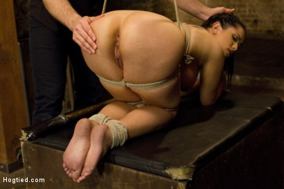 Photo number 10 from Introducing Double H All Natural Tits Katrina Jade shot for Hogtied on Kink.com. Featuring Katrina Jade in hardcore BDSM & Fetish porn.