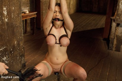 Photo number 8 from Introducing Double H All Natural Tits Katrina Jade shot for Hogtied on Kink.com. Featuring Katrina Jade in hardcore BDSM & Fetish porn.