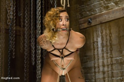 Photo number 3 from Hot Bondage Babe in Brutal Bondage Predicaments shot for Hogtied on Kink.com. Featuring Andre Shakti in hardcore BDSM & Fetish porn.