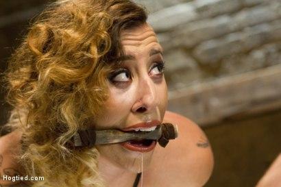 Photo number 4 from Hot Bondage Babe in Brutal Bondage Predicaments shot for Hogtied on Kink.com. Featuring Andre Shakti in hardcore BDSM & Fetish porn.