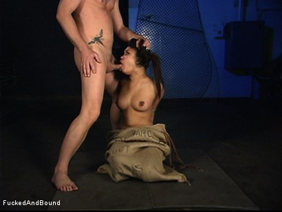 Photo number 16 from The Bitch In The Sack shot for  on Kink.com. Featuring Annie Cruz and Otto Bauer in hardcore BDSM & Fetish porn.