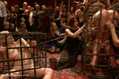 Photo number 2 from Happy Birthday Princess! Enjoy your presents! (part 1) shot for Public Disgrace on Kink.com. Featuring Ramon Nomar, Elyssa Greene, Cherie DeVille and Maitresse Madeline Marlowe in hardcore BDSM & Fetish porn.