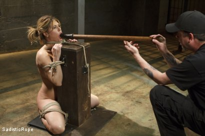Photo number 14 from Bit Tit MILF in Extreme Bondage shot for Sadistic Rope on Kink.com. Featuring Carissa Montgomery in hardcore BDSM & Fetish porn.