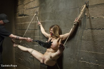 Photo number 8 from Bit Tit MILF in Extreme Bondage shot for Sadistic Rope on Kink.com. Featuring Carissa Montgomery in hardcore BDSM & Fetish porn.