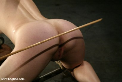 Photo number 11 from Pinky Lee shot for Hogtied on Kink.com. Featuring Pinky Lee in hardcore BDSM & Fetish porn.