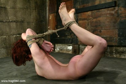 Photo number 6 from Pinky Lee shot for Hogtied on Kink.com. Featuring Pinky Lee in hardcore BDSM & Fetish porn.