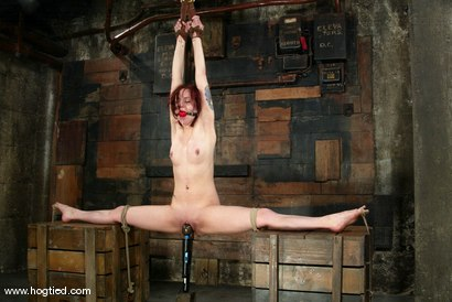 Photo number 7 from Pinky Lee shot for Hogtied on Kink.com. Featuring Pinky Lee in hardcore BDSM & Fetish porn.