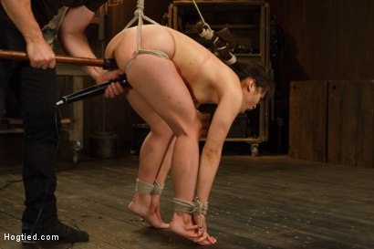 Photo number 8 from Hot Babe Tormented in Hard Bondage shot for Hogtied on Kink.com. Featuring Milcah Halili in hardcore BDSM & Fetish porn.