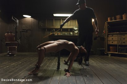 Photo number 6 from Bratty MILF gets tortured and made to cum!! shot for Device Bondage on Kink.com. Featuring Penny Barber in hardcore BDSM & Fetish porn.