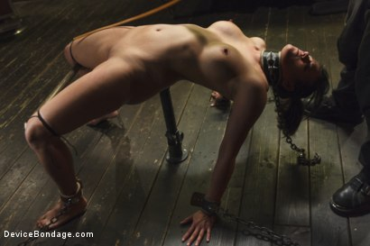 Photo number 15 from Bratty MILF gets tortured and made to cum!! shot for Device Bondage on Kink.com. Featuring Penny Barber in hardcore BDSM & Fetish porn.