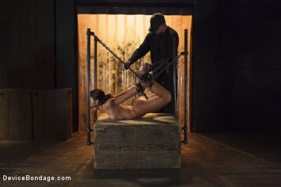 Photo number 14 from Young Latin Pain Slut  shot for Device Bondage on Kink.com. Featuring Liv Aguilera in hardcore BDSM & Fetish porn.