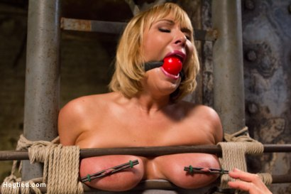 Photo number 6 from TIED WIDE OPEN for DOUBLE PENETRATION shot for Hogtied on Kink.com. Featuring Mellanie Monroe in hardcore BDSM & Fetish porn.