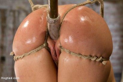 Photo number 8 from Big Tit Double Penetration Bondage Slut shot for Hogtied on Kink.com. Featuring Leya Falcon in hardcore BDSM & Fetish porn.