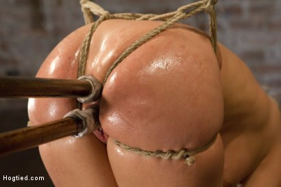 Photo number 9 from Big Tit Double Penetration Bondage Slut shot for Hogtied on Kink.com. Featuring Leya Falcon in hardcore BDSM & Fetish porn.