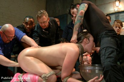 Photo number 8 from Dirty whore gets hosed down and humiliated shot for Public Disgrace on Kink.com. Featuring Jodi Taylor and Tommy Pistol in hardcore BDSM & Fetish porn.