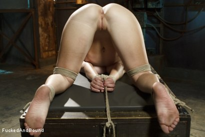 Photo number 13 from Newbie gets brutally fucked in tight bondage shot for  on Kink.com. Featuring Derrick Pierce and Sophia Locke in hardcore BDSM & Fetish porn.