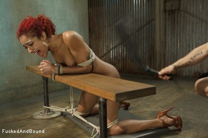 Photo number 3 from Hot Slut is Tortured and Fucked shot for  on Kink.com. Featuring Derrick Pierce and Daisy Ducati in hardcore BDSM & Fetish porn.