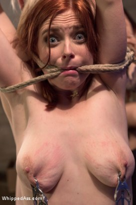 Photo number 11 from Drug Mules shot for Whipped Ass on Kink.com. Featuring Penny Pax, Bella Rossi and Ella Nova in hardcore BDSM & Fetish porn.
