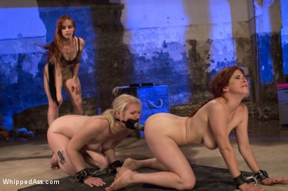 Photo number 13 from Drug Mules shot for Whipped Ass on Kink.com. Featuring Penny Pax, Bella Rossi and Ella Nova in hardcore BDSM & Fetish porn.
