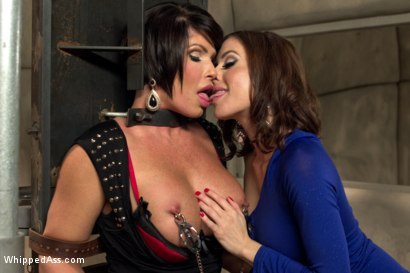 Photo number 4 from Gold Star Lesbian: Super MILF reprogrammed! shot for Whipped Ass on Kink.com. Featuring Gia DiMarco and Shay Fox in hardcore BDSM & Fetish porn.