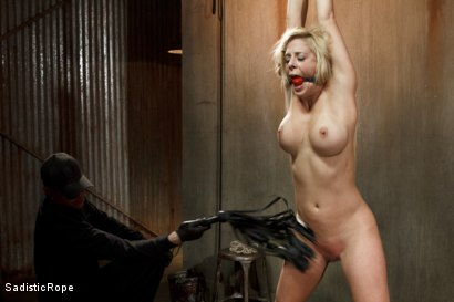 Photo number 5 from Hot Blonde with Big Tits in Brutal Predicament Bondage shot for Sadistic Rope on Kink.com. Featuring Cherie Deville in hardcore BDSM & Fetish porn.