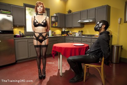 Photo number 7 from The Training of a Nympho Anal MILF, Final Day shot for The Training Of O on Kink.com. Featuring Veronica Avluv and Mickey Mod in hardcore BDSM & Fetish porn.