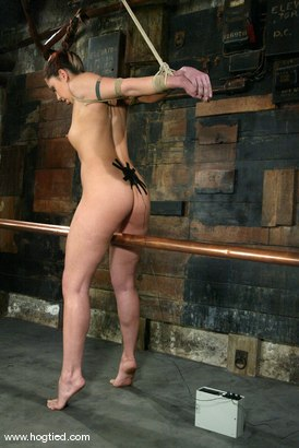 Photo number 3 from Satine Phoenix and Sir C shot for Hogtied on Kink.com. Featuring Sir C and Satine Phoenix in hardcore BDSM & Fetish porn.