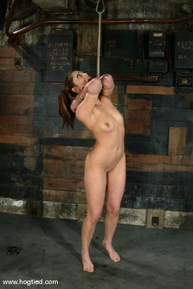 Photo number 7 from Satine Phoenix and Sir C shot for Hogtied on Kink.com. Featuring Sir C and Satine Phoenix in hardcore BDSM & Fetish porn.