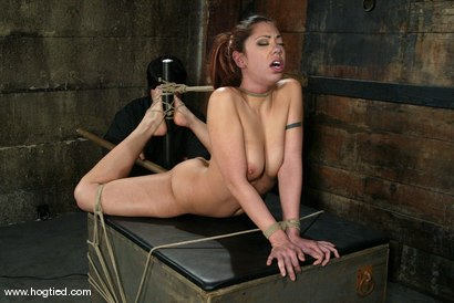 Photo number 10 from Satine Phoenix and Sir C shot for Hogtied on Kink.com. Featuring Sir C and Satine Phoenix in hardcore BDSM & Fetish porn.