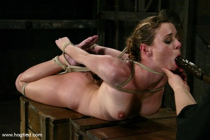 Photo number 14 from Lola and Sir C shot for Hogtied on Kink.com. Featuring Sir C and Lola in hardcore BDSM & Fetish porn.