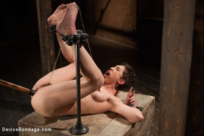 Photo number 11 from Lily LaBeau gets destroyed by grueling predicament bondage and made to cum against her will!! shot for Device Bondage on Kink.com. Featuring Lily LaBeau in hardcore BDSM & Fetish porn.