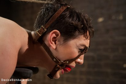Photo number 8 from Lily LaBeau gets destroyed by grueling predicament bondage and made to cum against her will!! shot for Device Bondage on Kink.com. Featuring Lily LaBeau in hardcore BDSM & Fetish porn.