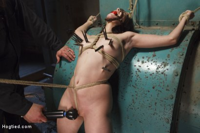 Photo number 7 from Taken, Tied and Tortured shot for Hogtied on Kink.com. Featuring Sgt. Major and Katt Anomia in hardcore BDSM & Fetish porn.