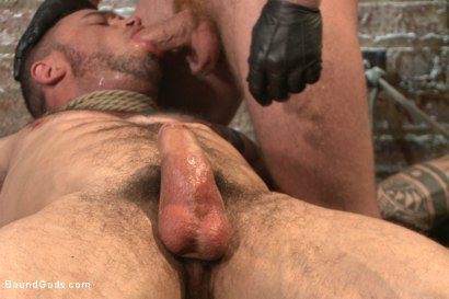 Photo number 14 from New Muscle Stud Bound Beaten and Fucked shot for Bound Gods on Kink.com. Featuring Seven Dixon and Connor Maguire in hardcore BDSM & Fetish porn.