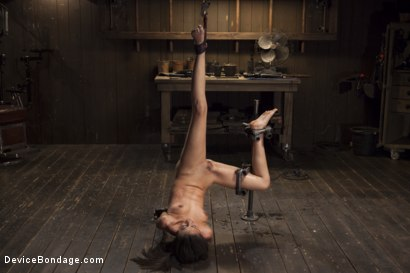 Photo number 15 from Her Body, Her Pain! shot for Device Bondage on Kink.com. Featuring Lyla Storm in hardcore BDSM & Fetish porn.