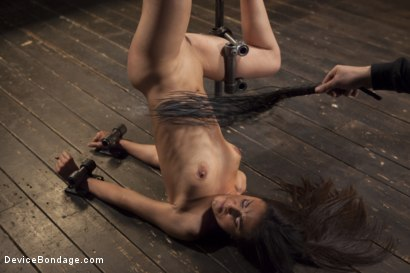 Photo number 10 from Her Body, Her Pain! shot for Device Bondage on Kink.com. Featuring Lyla Storm in hardcore BDSM & Fetish porn.