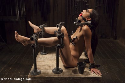 Photo number 4 from Her Body, Her Pain! shot for Device Bondage on Kink.com. Featuring Lyla Storm in hardcore BDSM & Fetish porn.