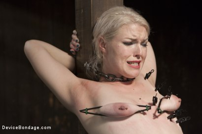 Photo number 8 from Young, Blond, All Natural Pain Slut gets a Full Dose of Brutality!! shot for Device Bondage on Kink.com. Featuring Orlando and Ella Nova in hardcore BDSM & Fetish porn.