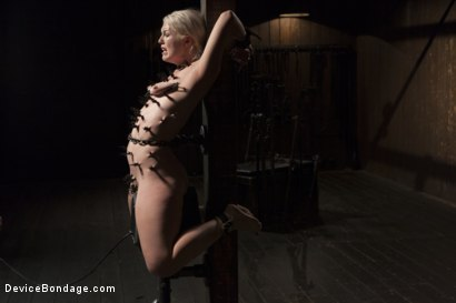 Photo number 6 from Young, Blond, All Natural Pain Slut gets a Full Dose of Brutality!! shot for Device Bondage on Kink.com. Featuring Orlando and Ella Nova in hardcore BDSM & Fetish porn.