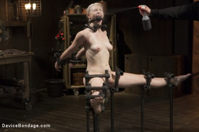 Photo number 14 from Young, Blond, All Natural Pain Slut gets a Full Dose of Brutality!! shot for Device Bondage on Kink.com. Featuring Orlando and Ella Nova in hardcore BDSM & Fetish porn.
