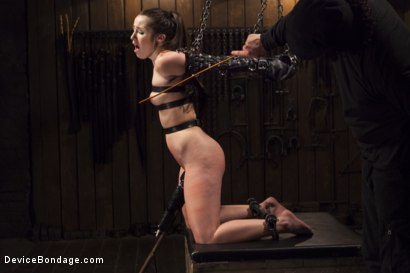 Photo number 6 from Shackled Submissive shot for Device Bondage on Kink.com. Featuring Orlando and Lola Foxx in hardcore BDSM & Fetish porn.