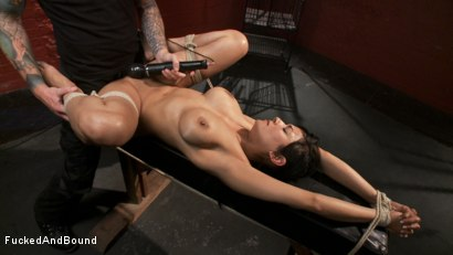 Photo number 10 from The Willing Slave shot for  on Kink.com. Featuring Beretta James and Christian Wilde in hardcore BDSM & Fetish porn.