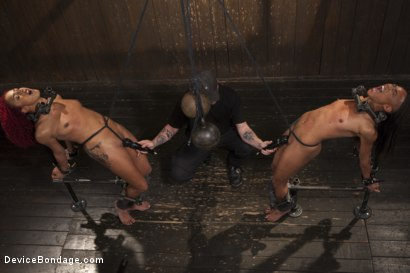 Photo number 3 from 2 Squirting Pain Sluts shot for Device Bondage on Kink.com. Featuring Daisy Ducati and Nikki Darling in hardcore BDSM & Fetish porn.