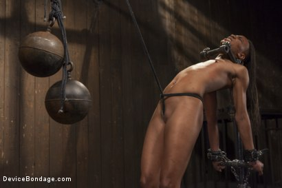 Photo number 6 from 2 Squirting Pain Sluts shot for Device Bondage on Kink.com. Featuring Daisy Ducati and Nikki Darling in hardcore BDSM & Fetish porn.